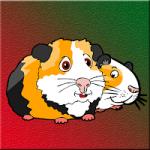 Guinea Pig Family Escape Games2Jolly