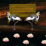 Heron Escape 8BGames