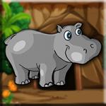 Hippo Calf Escape Games2Jolly