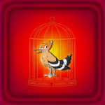 Hoopoe Escape Games2Jolly