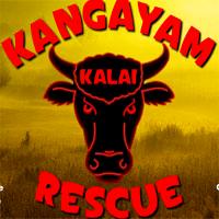 Kangayam Kalai Rescue WowEscape