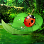 Ladybug Rainforest Escape Games2Rule
