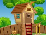 Little Boy Tree House Escape TheEscapeGames