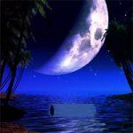 Little Zebra Moon Forest Escape Games2Rule
