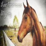 Lost Horse Rescue Mystery FreeRoomEscape