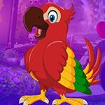 Lovable Parrot Escape Games4King