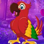 Lovable Parrot Escape Games4King