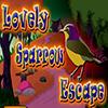 Lovely Sparrow Escape TheEscapeGames