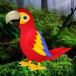 Macaw Green Forest Escape Games2Rule