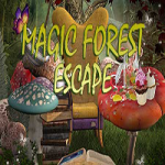 Magic Forest Escape 365Escape