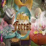 Magic Forest Hidden247