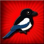 Magpie Bird Escape Games2Jolly