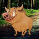 Mangrove Forest Pig Escape WowEscape