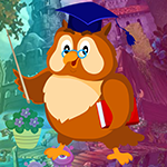 Master Owl Escape Games4King