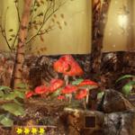 Mysterious Forest Escape 365Escape