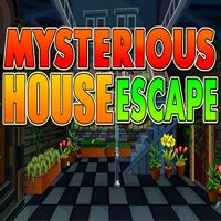 Mysterious House Escape