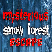 Mysterious Snow Forest Escape KNFGames