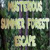 Mysterious Summer Forest Escape Escape Fan