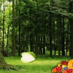 Nature Fruit Forest Escape WowEscape