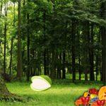 Nature Fruit Forest Escape WowEscape