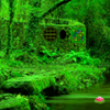 Nature Green Forest Escape Games2Rule