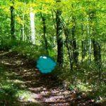 Nature Wood Land Escape Games2Rule