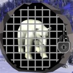North Pole Bear Escape WowEscape