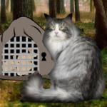 Norwegian Cat Forest Escape WowEscape