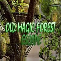 Old Magic Forest Escape 365Escape