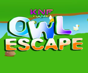 Owl Escape KNFGames
