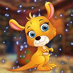 Pet Kangaroo Escape Games4King