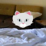 Pick And Place Escape Kitty HiddenOGames