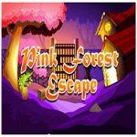 Pink Forest Escape D2G