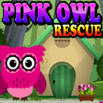 Pink Owl Rescue Games4King