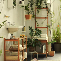 Plant Furnishings House Escape Games2Rule