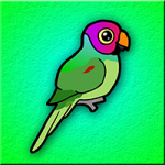 Plum Headed Parakeet Escape Games2Jolly