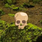 Primeval Forest Escape Games2Rule