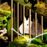 Rabbit Couple Rescue 8BGames
