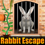 Rabbit Escape 3 Games4King