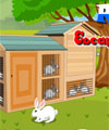 Rabbit Escape From Eagle PinkyGirlGames
