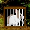 Rain Forest Rabbit Escape WowEscape