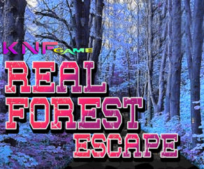 Real Forest Escape KNFGames