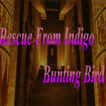 Rescue From Indigo Bunting Bird GamesClicker