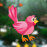 Rescue Little Bird AvmGames
