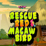 Rescue Red Macaw Bird KNFGames