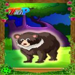 Rescue The Bear Top10NewGames