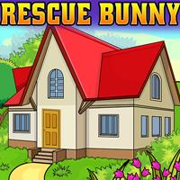 Rescue The Bunny ENAGames