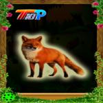 Rescue The Cute Fox Top10NewGames