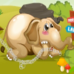 Rescue The Little Elephant GenieFunGames