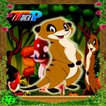 Rescue The Meerkat Top10NewGames